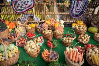 Фестиваль «Дожинки»