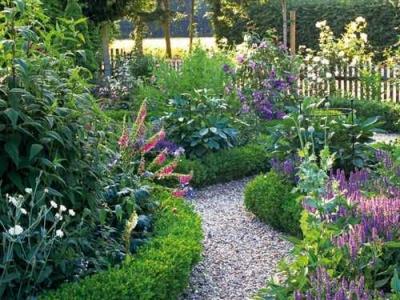 Цветы – красота нашего сада