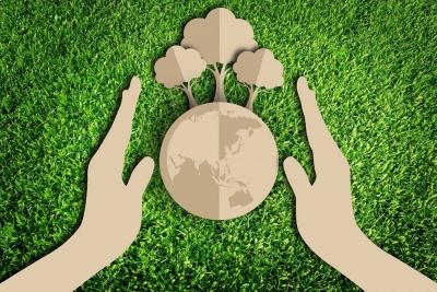 Школьное лесничество «Бурундучок» на страже экологии