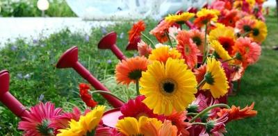 В цветочном царстве