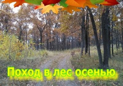 Спортивный поход в осенний лес